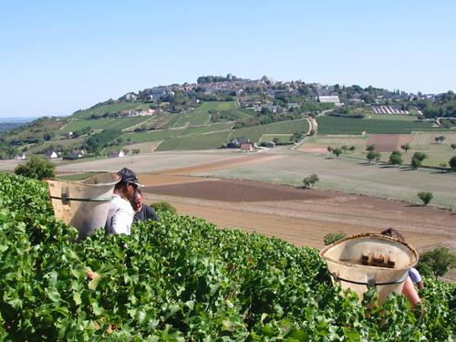 french wine estates
