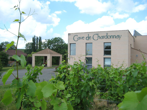 Cave<span> de Chardonnay<span>