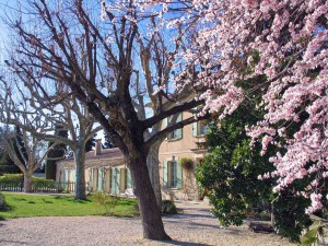 Chateau <span>du Trignon</span>